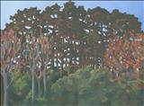 Evening Pines, Chosen Hill by Claire Bergin, Painting, Acrylic on board